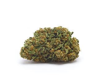 orange-bud-orange-weed-cbd-flower