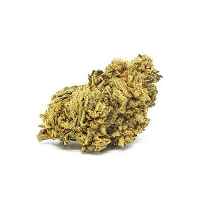 White Widow Flower Cannabis