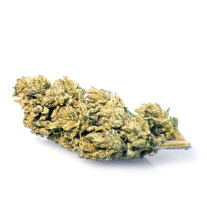 melon-kush-weed-thc-cbd-flowers-cannabis-sativa-marijuana-indica