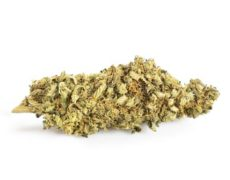 gorilla glue weed marijuana light