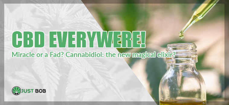 CBD Everywhere, a Miracle or a Fad?