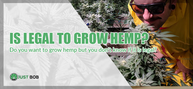 is legal grow hemp?