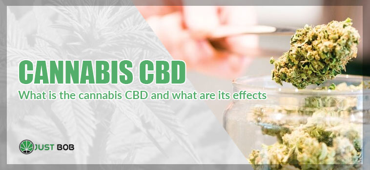 what is cannabis cbd