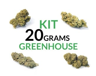 Kit 20 Grams Greenhouse justbob.shop