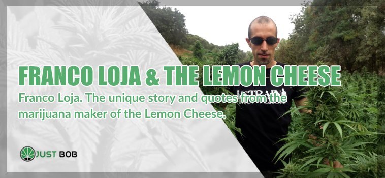 Franco Loja & the Lemon Cheese marijuana light