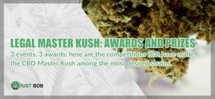 Legal cannabis Master Kush