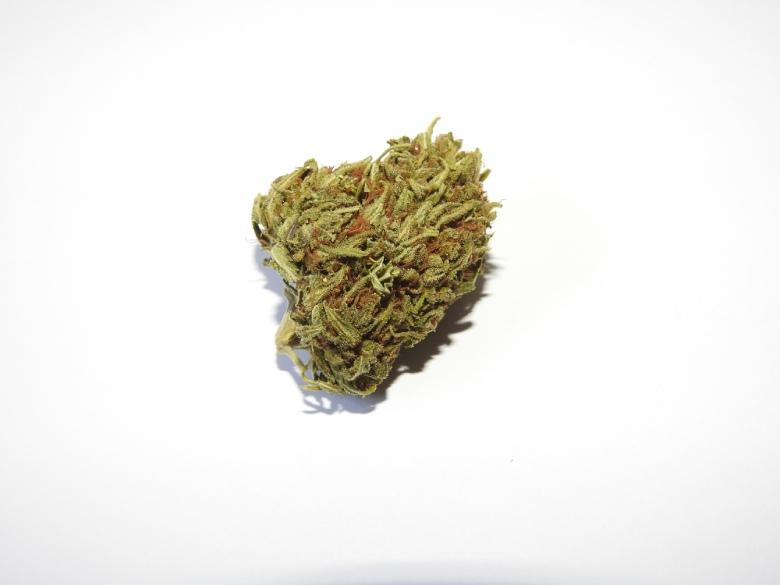 cbd flower of legal marijuana melon kush