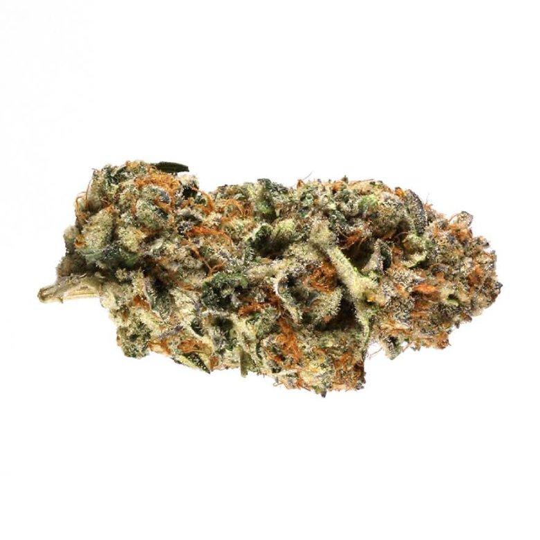 indica dominant hybrid of do si dos marijuana cbd