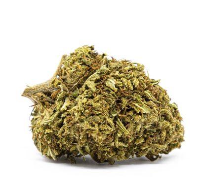 orange bud weed