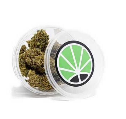 white widow legal cannabis