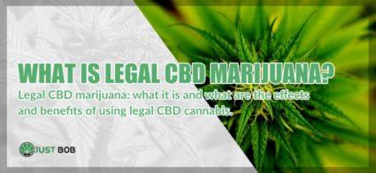 What is legal CBD marijuana