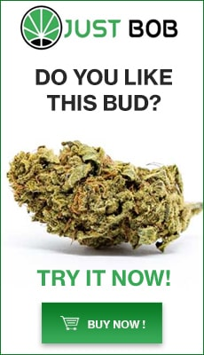Marijuana Shop JustBob