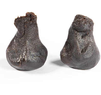2 pieces molded of Girl Scout Cookies, legal hash online